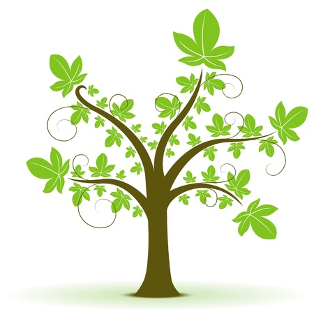 tree growing: illustration of natural tree on white background Illustration