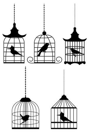 illustration of bird in cage on white background illustration