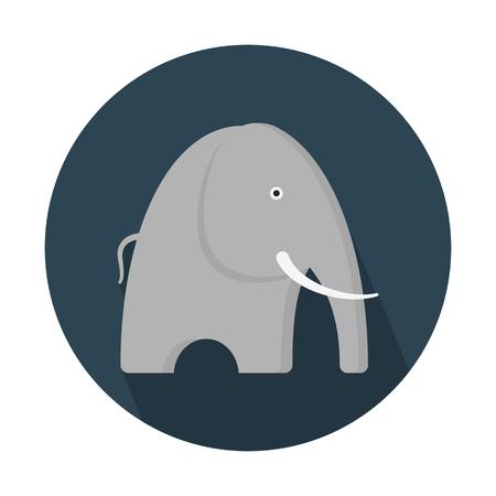 Elephant, large mammal