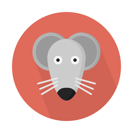 Mouse, small rodent