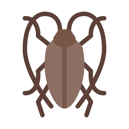 Cockroach or Insect Illustration