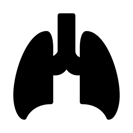 Lungs - Pulmonology Department Illustration