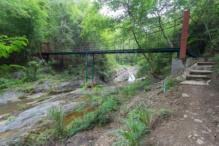 rope bridge: Wire Rope bridge in a park