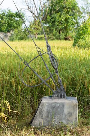 safty: Slings lock safty with pole steel on stake in rice field