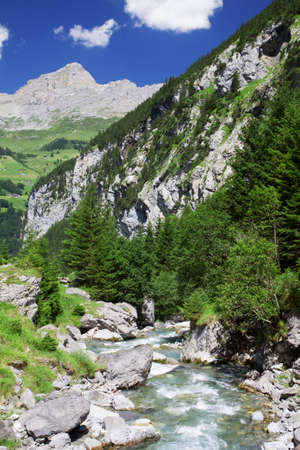 Rapid brook near Klausen Pass in Swiss Alps Stock Photo - 18005207