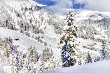 skying: Beautiful view to winter Swiss Alps, Berner Oberland, Adelboden  Stock Photo