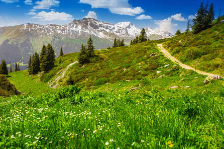 View to Swiss Alps from the top of Madrisa mountain, Davos, Grisons, Switzerland photo