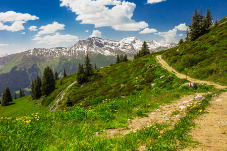 View to Swiss Alps from the top of Madrisa mountain, Davos, Grison, Switzerland photo