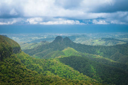 Mountains covered by subtropical rainforest in Springbrook national park, Australia photo
