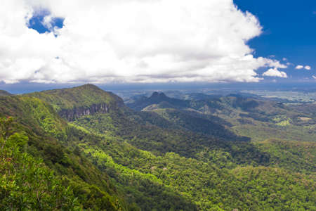 Subtropical rainforest with mountains in Springbrook national park, Australia photo