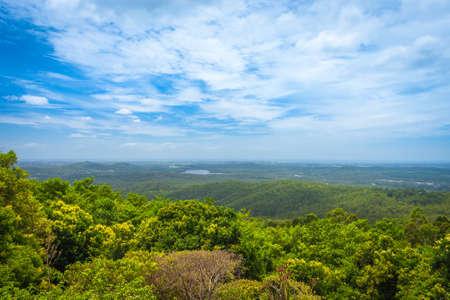 Queensland landscape with subtropical rainforest in Kondalilla National Park, Australia photo