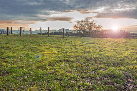 Beautiful autumn sunset on the meadow with Swiss Alps view photo