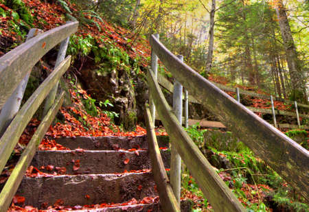 Wooden handrail and stairs on the hiking pathway through the autumn forest, HDR Stock Photo