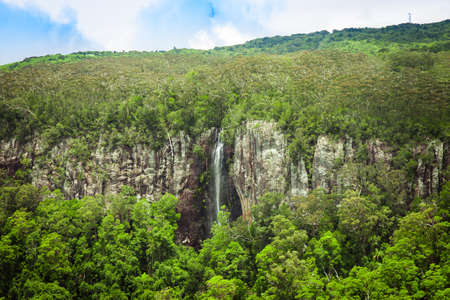 Waterfall in the subtropical rainforest, Springbrook national park, Gold Coast, Australia