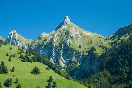 View from the Waegitalersee coast to Zindlenspitz, Schwyz, Switzerland
