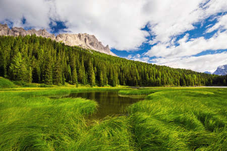 lake misurina: View to Lake Misurina, conifer forest and Dolomites, Italy, Europe Stock Photo