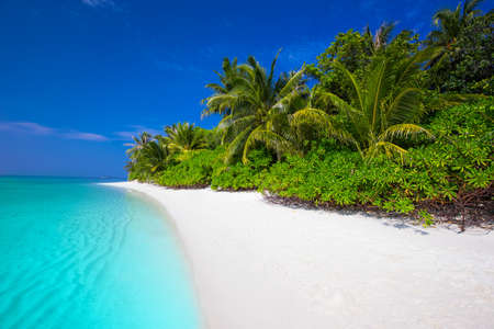 bungalows: Tropical island with sandy beach, palm trees, overwater bungalows and tourquise clear water