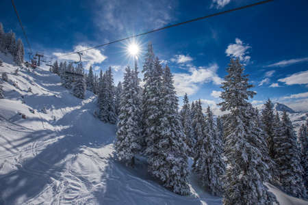 wildkogel austria: Trees covered by fresh snow in Alpine mountains - Austria from Kitzbuehel ski resort - one of the best ski resort in the workd with 54 cable cars, 170 km prepared skiing slopes and place of famous Hahnenkamm race, Tyrol, Austria