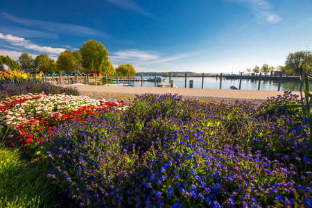 Flowers alond embarkment in the Kreuzlingen city center near Konstanz city with the lake Constance and boats in the background, Switzerland. Stock Photo