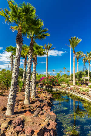 Beautiful view to tropical island resort garden with palm trees, flowers and river on Fuerteventura, Canary Island. Stock Photo