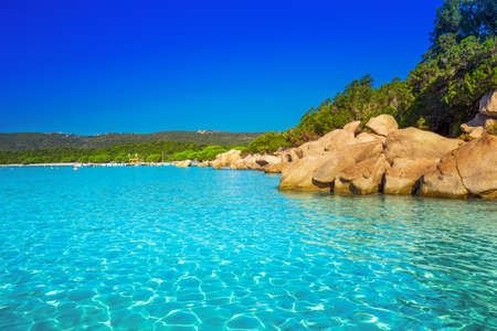 Santa Giulia beach with red rocks, pine trees and azure clear water, Corsica, France. 免版税图像
