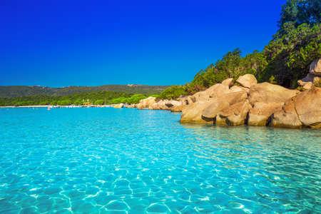 Santa Giulia beach with red rocks, pine trees and azure clear water, Corsica, France. 版權商用圖片 - 64132370
