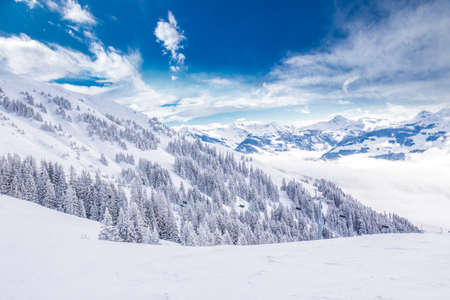 Trees covered by fresh snow in Austria Alps from Kitzbuhel ski resort - one of the best ski resort in the workd with 54 cable cars, 170 km prepared skiing slopes and place of famous hahnenkamm races. Stock Photo