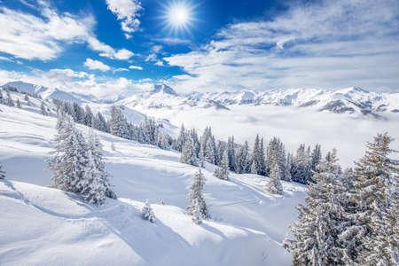 wildkogel austria: Trees covered by fresh snow in Alps. Stunning winter landscape.