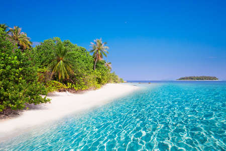 Tropical island with sandy beach with turquoise clear water and palm trees