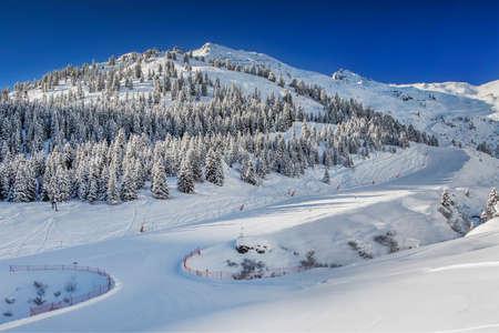 Arbres couverts de neige fraîche dans les Alpes d'Autriche - Zillertal arena, en Autriche. Banque d'images - 75267321