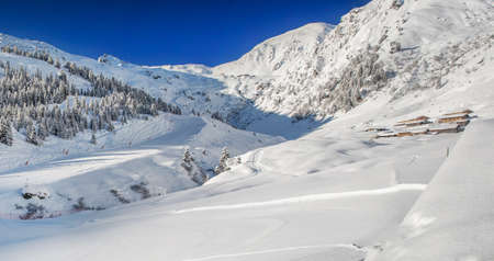 anton: Trees covered by fresh snow in Austria Alps - Zillertal arena, Austria.