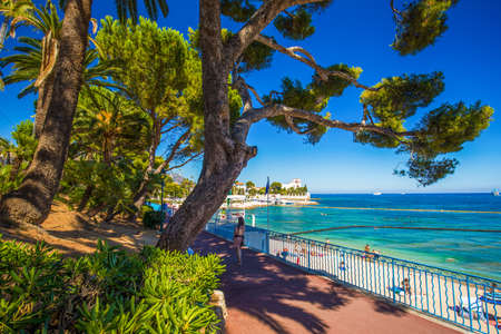 Beach promenade in the Beaulieu-sur-mer village with palm trees, pine trees and azure clear water, cote dazur, French riviera, France, Europe.