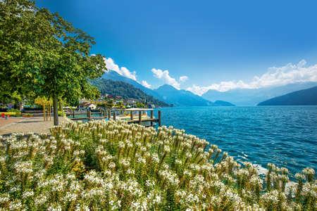 WEGGIS, SWITZERLAND - August 20, 2018 - Village Weggis, lake Lucerne (Vierwaldstatersee), Pilatus mountain and Swiss Alps in the background near famous Lucerne (Luzern) city, Switzerland Editorial