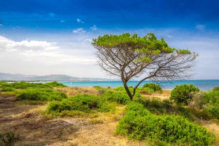 Budoni beach on Sardinia island, Sardinia, Italy, Europe.