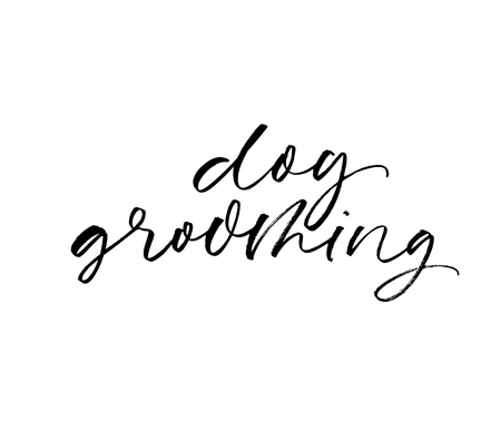 Dog grooming phrase handwritten in an elegant calligraphic style on white background. Modern brush calligraphy. Vector ink illustration. Isolated on white background.