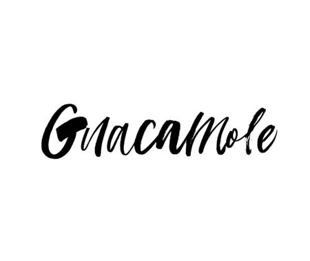 Guacamole ink pen vector lettering. Popular food phrase. T shirt decorative print. Restaurant menu illustration. Handwritten world. Isolated on white paper. 向量圖像