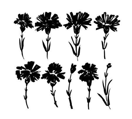 Ð¡arnation hand drawn paint vector set. Ink drawing flowers and plants, monochrome artistic botanical illustration. Isolated floral elements, hand drawn illustration. Brush strokes silhouette.