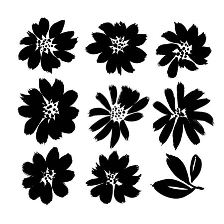 Stylized brush flowers vector set. Ink drawing flowers and plants, monochrome artistic botanical illustration. Isolated botanical elements, hand drawn illustration. Black ink brush strokes textures.