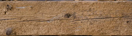 wholes: old construction wood with woodworm wholes
