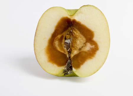 feculent apple - rotten from the center