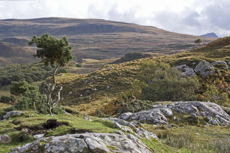 rural landscape in the scottish highlands with rough stones and a small tree in front photo