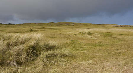 afield: dunes in north scotland with grass and hills in the background