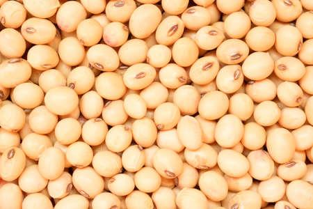 Sucha soja z bliska widok z góry, tło żywności
