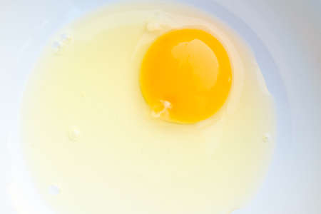 Egg in a white plate