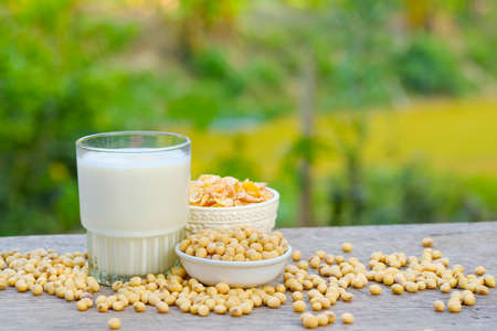 Soymilk in glass on the table with copy space.breakfast concept.soybeans dry on table Stockfoto