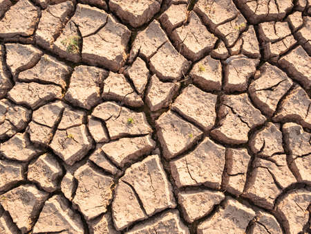 Dry soil results from lack of water.Global warming