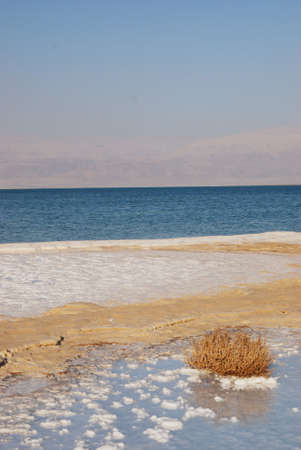 Salt on dead sea in the rays of sunset by evening Imagens