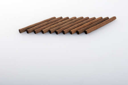 havana cigar: Brown cigar tobacco on a white background Stock Photo