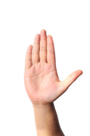 partes del cuerpo humano: De mano derecha de cinco dedos aislados sobre fondo blanco Foto de archivo