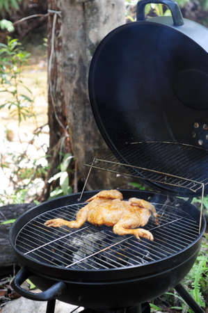 grill chicken on barbeque with smoke from charcoal Stock Photo - 11079894